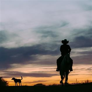Country Background Music L Universal Production Music